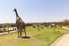 Afrykanina park przy Aswan, Egipt Zdjęcie Stock
