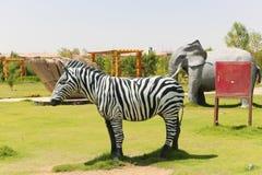 Afrykanina park przy Aswan, Egipt Obrazy Stock