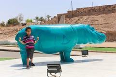 Afrykanina park przy Aswan, Egipt Obraz Royalty Free