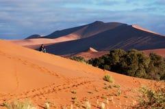 Afrykanina pustyni przygoda Fotografia Stock