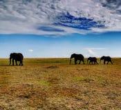 Afrykanina styl Zdjęcia Stock