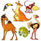 Afrykańscy dzikie zwierzęta ustawiający Obrazy Royalty Free