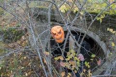 Afschuwelijk schepsel in het de herfstbos in de avond Gelukkig Halloween Pumpkinhead royalty-vrije stock afbeelding