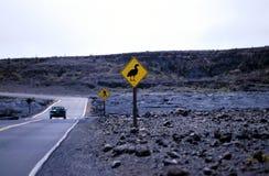 Aftasten van een oud beeld van vulkaan nationaal park royalty-vrije stock afbeelding