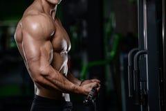 Afte de presentación modelo de la aptitud atlética hermosa muscular del culturista foto de archivo