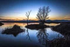After Sunset, Sacramento National Wildlife Refuge Royalty Free Stock Image