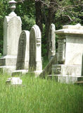 Afterlife Lineup. Row of old headstones in an overgrown cemetery royalty free stock photos