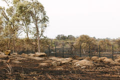 Aftermath of the Epping Bushfires. EPPING, AUSTRALIA - 20 DECEMBER 2015: A day after fires swept through Epping in Melbourne, CFA Fire Crews patrol the area for Royalty Free Stock Photos