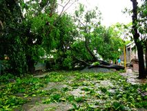 Aftermath of typhoon Glenda (Rammasun - international name) in the Philippines Stock Photos