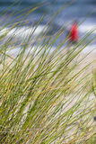 Afternoon at the Beach. Beach grass plant and background scene with sea waves and a red spotted walking human stock photography