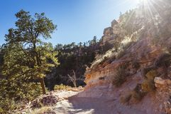 Afternoon on the Bright Angel trail in the Grand Canyon Stock Photography