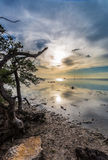Afternoon clouds and color in Key Largo Royalty Free Stock Photography