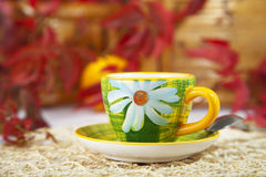 Afternoon cup of tea or coffee on red leaves Royalty Free Stock Images