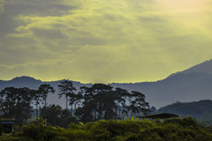 Afternoon. Damn afternoon in Ha Giang Royalty Free Stock Photo
