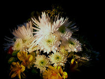 Afternoon Floral. A bouquet of mums and others sitting in an afternoon sunbeam stock photos