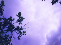 Afternoon full of clouds. This is a picture of clouds in the afternoon sky. It seems the rain will come soon. A beauty of a little purple and blue color Stock Photos