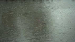 Afternoon Heavy Rain stock footage