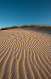 Afternoon light on Dunes Royalty Free Stock Photos