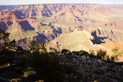 Afternoon light Grand Canyon Stock Photography