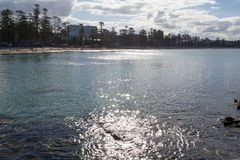 Afternoon in Manly Royalty Free Stock Images