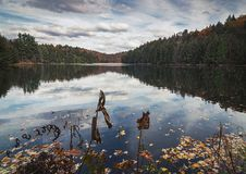 An afternoon at Meech lake. Gatineau Park, Quebec, Canada Stock Image