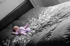 Afternoon Nap Royalty Free Stock Photo