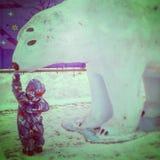 A small boy feeding a big polar bear stock images