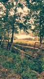 Afternoon picture of land stock images