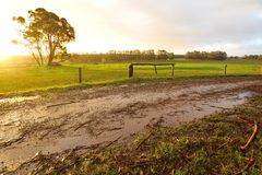 Afternoon after rain Royalty Free Stock Photography