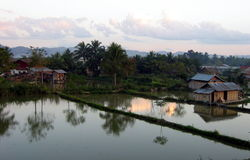 Afternoon reflections. Late afternoon in Luang Nam Tha, Laos. We can see some flooded rice fields here stock images