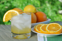 Afternoon Refreshments. Of citrus treats served on the patio royalty free stock photography