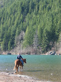 Afternoon Ride. A woman on a chestnut horse rides into a lake in Washington State royalty free stock photo