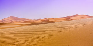Afternoon in Sahara Royalty Free Stock Photography