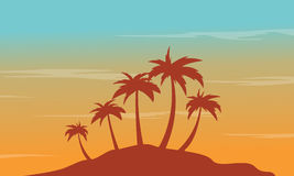 At afternoon seaside palm scenery silhouettes Royalty Free Stock Photography
