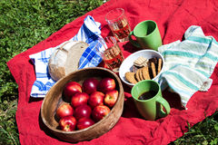 Afternoon snack Stock Images
