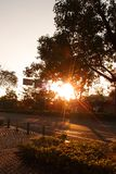 In the afternoon streets, the sunset sun shines from the trees, shining and warm. stock images