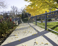 Afternoon stroll through the park. Autumn day at the park Stock Image
