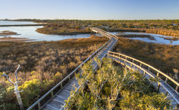Afternoon Sun on Big Lagoon Boardwalk. Boardwalk trails cross a tidal outlet to Grand Lagoon in Big Lagoon State Park near Pensacola, Florida stock images