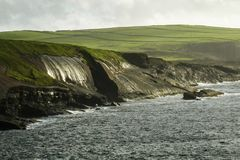 Afternoon sun shimmers on wet mossy Kilkee Cliffs along Wild Atlantic Way, County Clare, Ireland. Panoramic view of vast pastoral grassland above mossy, wet stock photography