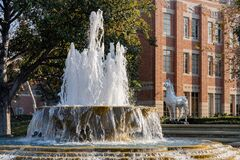 Free Afternoon Sunny View Of The Patsy And Forrest Shumway Fountain Of USC Stock Images - 174686744