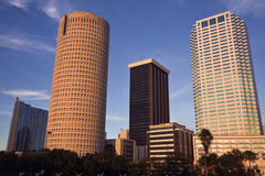 Afternoon in Tampa Stock Photography