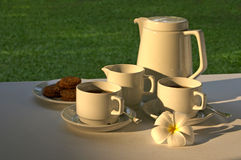 Afternoon Tea. A pot of tea or coffee set for two with cup, milk and some biscuits with a frangipani flower in an outdoor garden setting royalty free stock photography