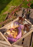 Afternoon tea and croissants. Afternoon snack of tea and chocolate croissants in a spring garden Stock Photo