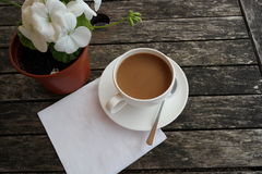 Afternoon tea. Cup of tea with white napkin and potted plant on old weathered wooden table Stock Images