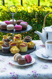 Afternoon tea in the garden Royalty Free Stock Photo