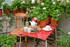 Afternoon tea in the greenhouse Stock Images