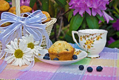 Afternoon Tea Party Royalty Free Stock Image