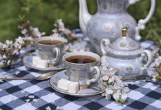 Afternoon tea in spring garden Royalty Free Stock Photos