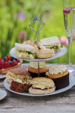 Afternoon tea Stock Image