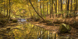 Afternoon on Tinkers Creek. Tinkers Creek, Cuyahoga Valley National Park Royalty Free Stock Images